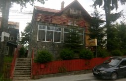 Hostel Sinaia, Strugurel Guesthouse