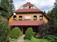Accommodation Borșa, Bear B&B