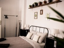 Accommodation Șeușa, Ray's Place Apartment