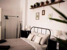 Cazare Sibiel, Apartament Ray's Place