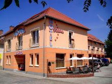 Pachet Ungaria, Hotel Viktória
