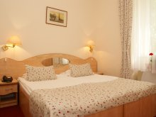 Accommodation Ruștin, Hotel Ferdinand