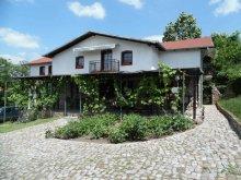 Accommodation Caraș-Severin county, Dolly B&B
