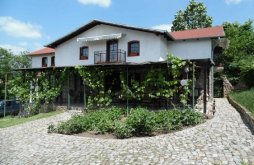 Pensiune Sasca Montană, Casa Dolly