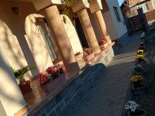 Bed & breakfast Zetea, Nárcisz Guesthouse