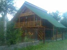 Casă de oaspeți județul Maramureş, Casa de vacanță Delia