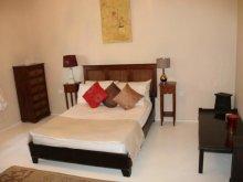 Accommodation Tiszapalkonya, The Gina Gubor House