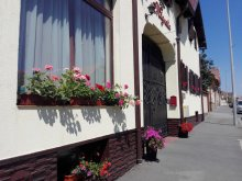 Accommodation Sibiu county, Magnolia B&B