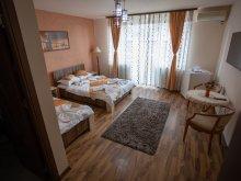 Villa Deva, Tichet de vacanță, Casa Alex Vila