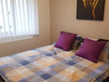 Accommodation Rucăr, PEG Apartment
