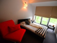 Accommodation Fânațe, Hotel Biscuit