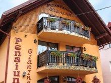 Cazare Căpruța, Voucher Travelminit, Pensiunea Agroturistica Gianina