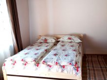 Accommodation Braşov county, Vacation home Tea