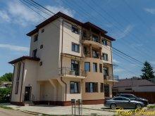 Accommodation Izvoru Berheciului, Tichet de vacanță, Dominic B&B