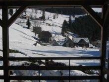 Cazare Pârtie de schi Arieșeni, Pensiunea Vila Apuseni