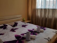 Accommodation Mărunțișu, Alexia Apartment