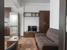 Accommodation Ilișeni, REZapartments 5.1