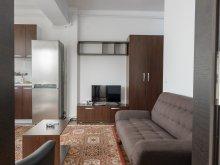 Accommodation Izvoru Berheciului, REZapartments 5.1