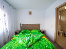 Pensiune Târgoviște, Tichet de vacanță, Vila Fascination