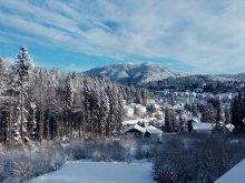 Szállás Brassó (Braşov) megye, Tichet de vacanță, Fascination Panzió