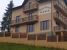 Cazare Valea Largă-Sărulești, Pensiunea Casa Denis