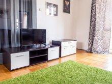 Accommodation Huzărești, Best Choice Central Apartament
