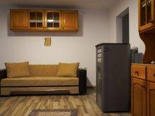 Pachet Bodoc, Apartament Csomor