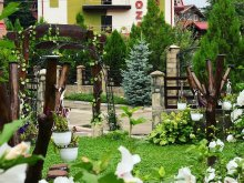 Pensiune județul Buzău, Pensiunea Roza
