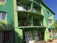 Accommodation Techirghiol, Silvia Guesthouse