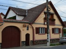 Accommodation Sibiu county, Ileana B&B