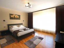 Accommodation Sânzieni, Moldavia Class Villa
