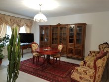 Apartament Hăbășești, Apartament Vintage