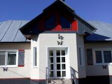 Casă de vacanță Susenii Bârgăului, Casa din Cring