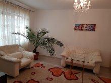 Apartment Antohești, Style Apartment