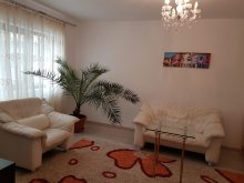 Apartment Ilișeni, Style Apartment