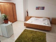 Apartament Băneasa, Apartament Opened Loft