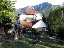 Accommodation Neamț county, Tichet de vacanță, Gabriela B&B