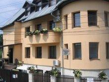Panzió Kolozs (Cluj) megye, Tichet de vacanță, Edy Panzió