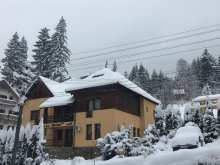 Accommodation Bistricioara, Korona Pension