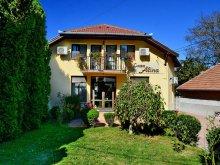 Accommodation Hunedoara county, Tichet de vacanță, Alina B&B