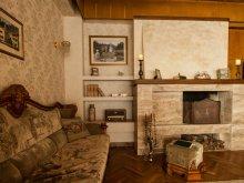Accommodation Făcălețești, Condor Villa