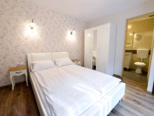 Accommodation Arad county, Bella B&B