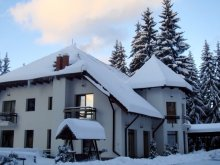 Accommodation Poiana Brașov Ski Slope, Vila Daria
