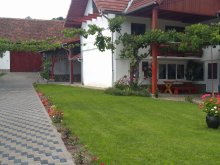 Accommodation Sibiu county, Flori B&B