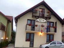 Accommodation Sibiu county, Travelminit Voucher, Charter Apartments - Vila Costea