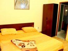 Accommodation Timiș county, Agnes B&B