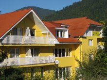 Szállás Bálványosfürdő (Băile Balvanyos), Tichet de vacanță, Iris Panzió