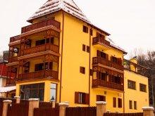 Accommodation Borsec, Ursu Villa