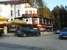 Panzió Brassó (Brașov), Ancora Panzió