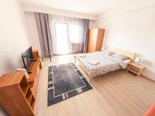 Accommodation Briheni, Panoráma Apartment